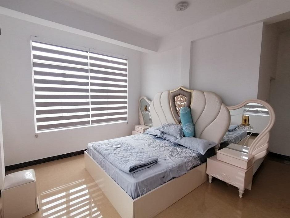 zebra-blind-site-images
